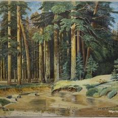 """Картина """"Лесной пейзаж"""", лицевая сторона после реставрации"""